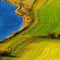 Curved patterns in mown fields set next to a winding river