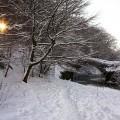 The weak morning sun breaks through the trees on a cold snowy winter morning at Cuddy Bridge, Innerleithen, Scottish Borders.