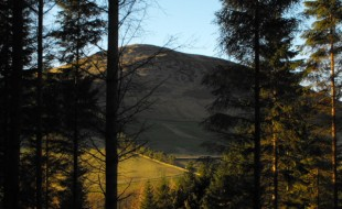 Looking towards Lee Pen from the woods near Innerleithen Golf Course, Scottish Borders